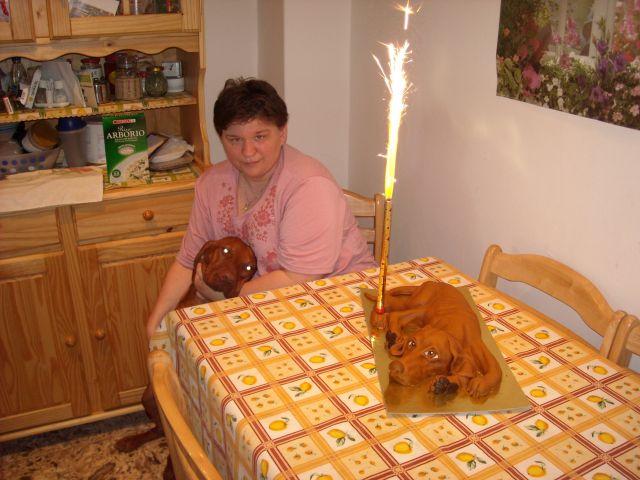 vicces szülinapi torták képekkel A gazdim én és a rólammintázott szülinapi torta   Vadóc (kutya  vicces szülinapi torták képekkel